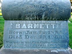 Lavina Janett <i>Brown</i> Barnett