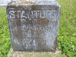 Aaron B. Stanturf
