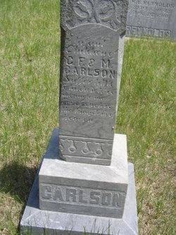 2 Infants Carlson