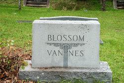 Catherine <i>Bornemann</i> Blossom