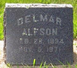 Delmar Alfred Alfson