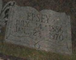 Epsey Ellen Elzora <i>Anderson</i> Poe