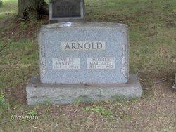 Henry C Arnold