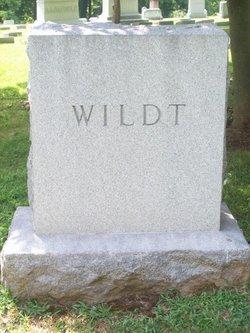 Kenneth David Wildt