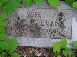 Alice R Evans