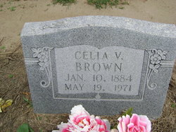 Celia V Brown