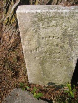 Priscilla Coffin