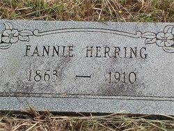 Fannie Elizabeth <i>Walton</i> Herring