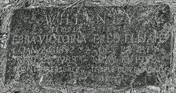Fred Elijah Whitney