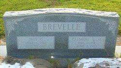 Troy G Brevelle
