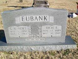George N. Newt Eubank