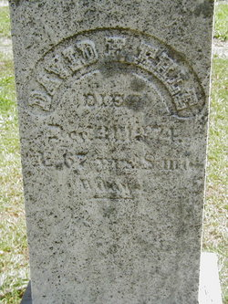 David H Ehle