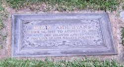 Kelly Ann Evans