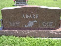Carl Peter Abarr