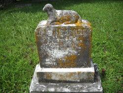 Louie Garrett