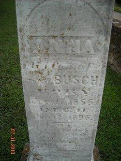 Anna Busch