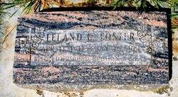 Leland C Foster