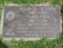 Mrs Carlota <i>Lopez</i> Perez