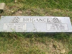 Albert Newton Brigance