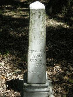 Georgia A Berry