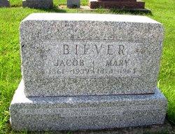 Jacob Biever