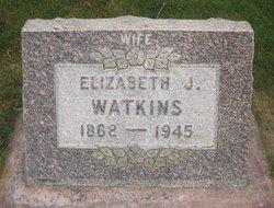 Elizabeth Jane <i>Leonard</i> Watkins