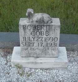 Robert C Cobb