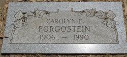 Carolyn E Forgostein