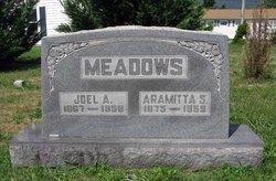 Aramitta R. Mittie <i>Strole</i> Meadows