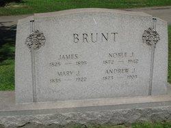 Mary J. <i>Johnston</i> Brunt