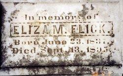 Eliza M. <i>Monser</i> Flick