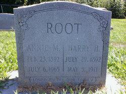 Harry Harrison Root