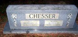 Agnes Ellen <i>Miller</i> Chesser