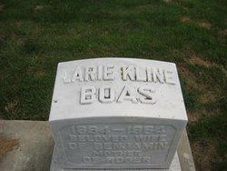 Larie <i>Kline</i> Boas