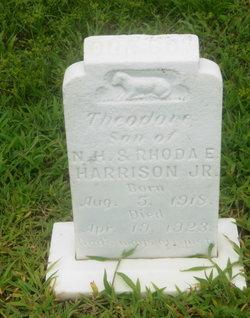 Theodore Harrison