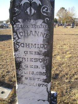 Johanne <i>Triesch</i> Schmidt