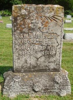 Lucy Ellis <i>Wise</i> Barringer