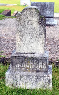Belle <i>Holbrooks</i> Anderson