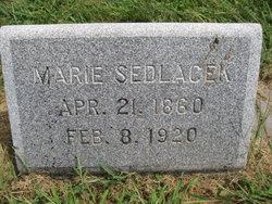 Marie Sedlacek