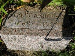 Swan Albert Anderson