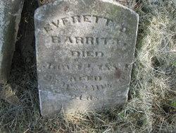 Everett Barritt