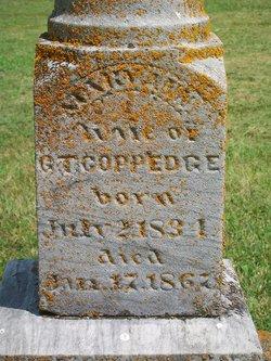 Mary Ann Polly <i>Davis</i> Coppedge