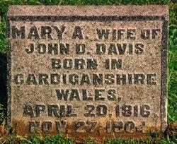 Mary Ann <i>Griffith</i> Davis