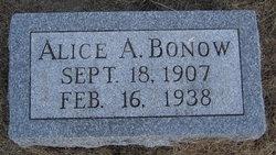 Alice A <i>Bonow</i> Bonow