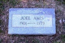 Joel Amis