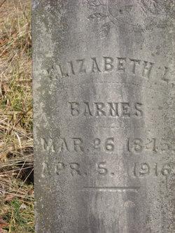 Elizabeth Ellen <i>Barnes</i> Snodgrass