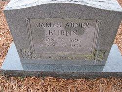 James Abner Burns