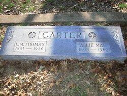 Allie Mae <i>Payne</i> Carter