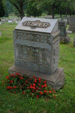 Jane <i>Espy</i> Bower