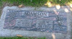 Lee M Adamson